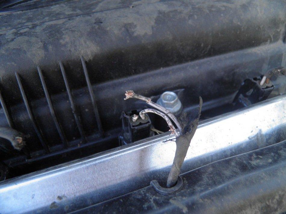 Средство от крыс под капотом авто